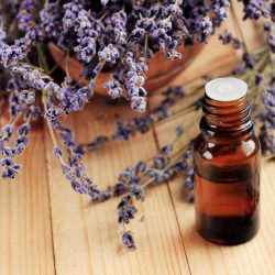 Lavender oil could cause abnormal breast growth in young boys and girls, new study suggests -