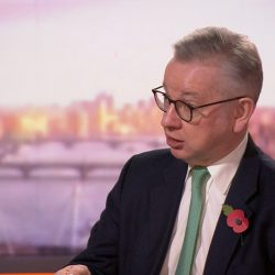 Covid-19: English lockdown may last beyond 2 December, says Gove -